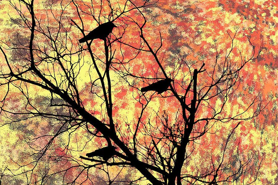 Blackbirds Photograph - Blackbirds In A Tree by Bill Cannon