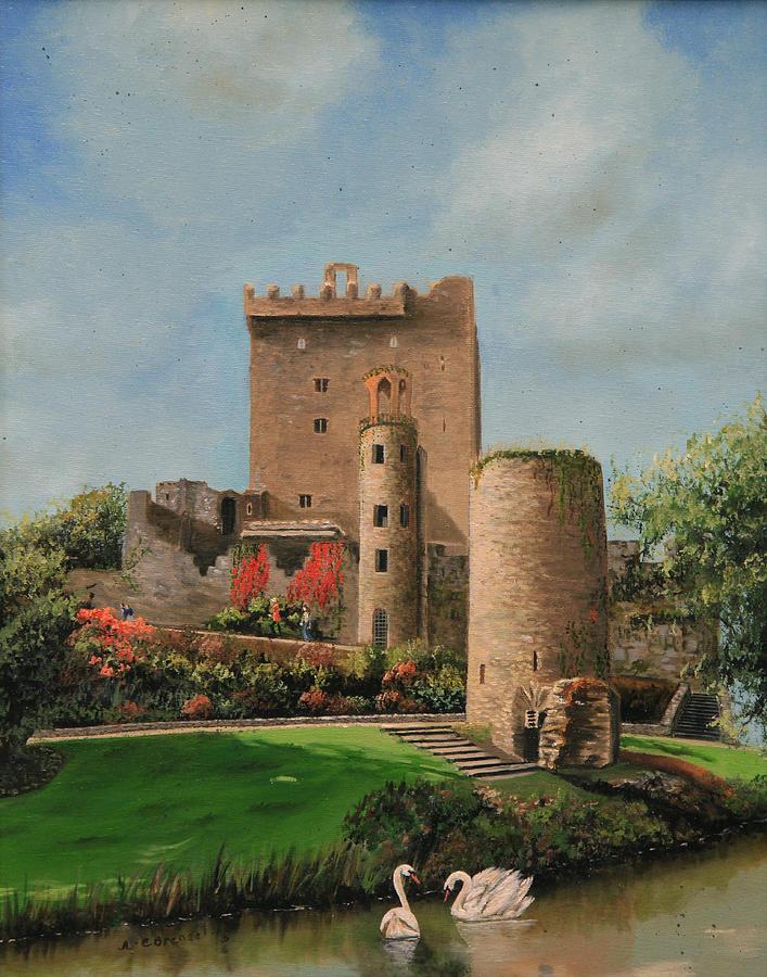 Blarney Castle Ireland by Cecilia Brendel
