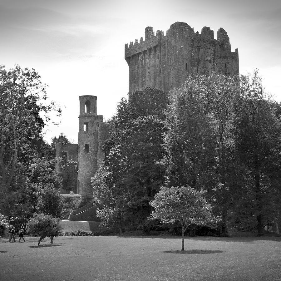 Ireland Photograph - Blarney Castle by Mike McGlothlen