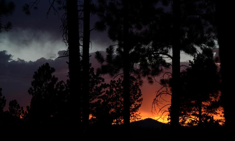 Dakota Photograph - Blazing Black Hills Sunset by Dakota Light Photography By Dakota