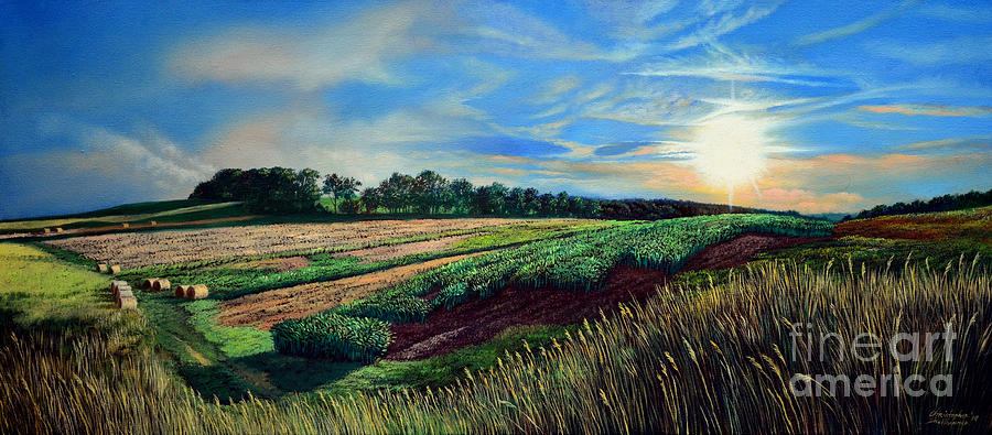 Farm Painting - Blazing Sun on Farmland by Christopher Shellhammer