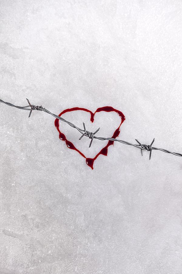 Wire Photograph - Bleeding Love by Joana Kruse