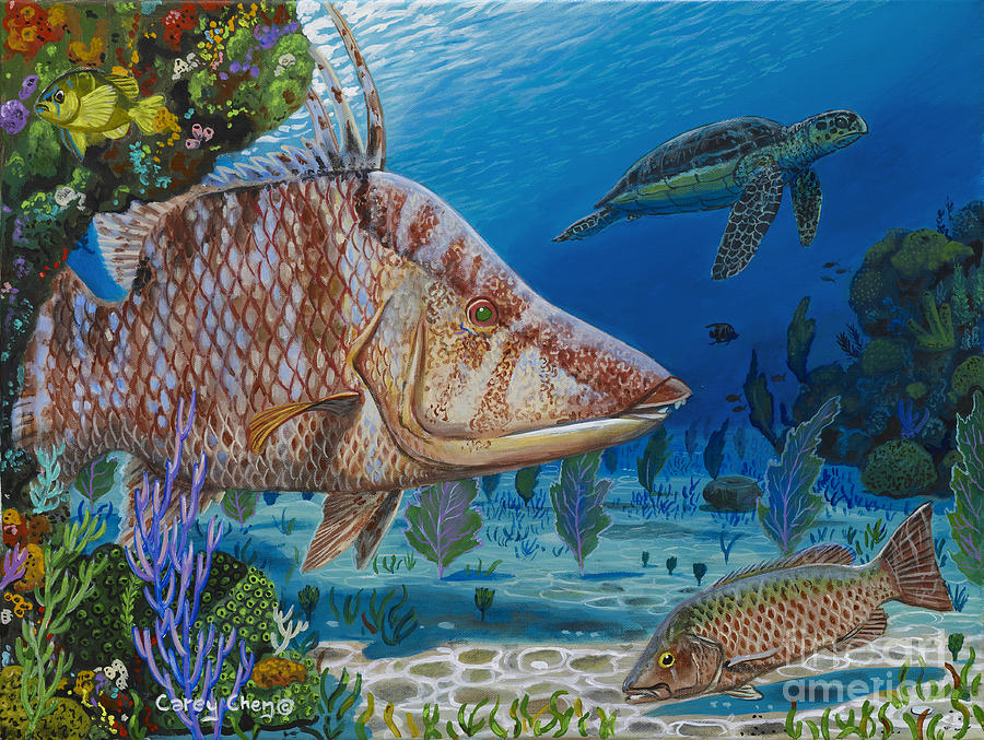 Hogfish Painting - Blend In Re0015 by Carey Chen