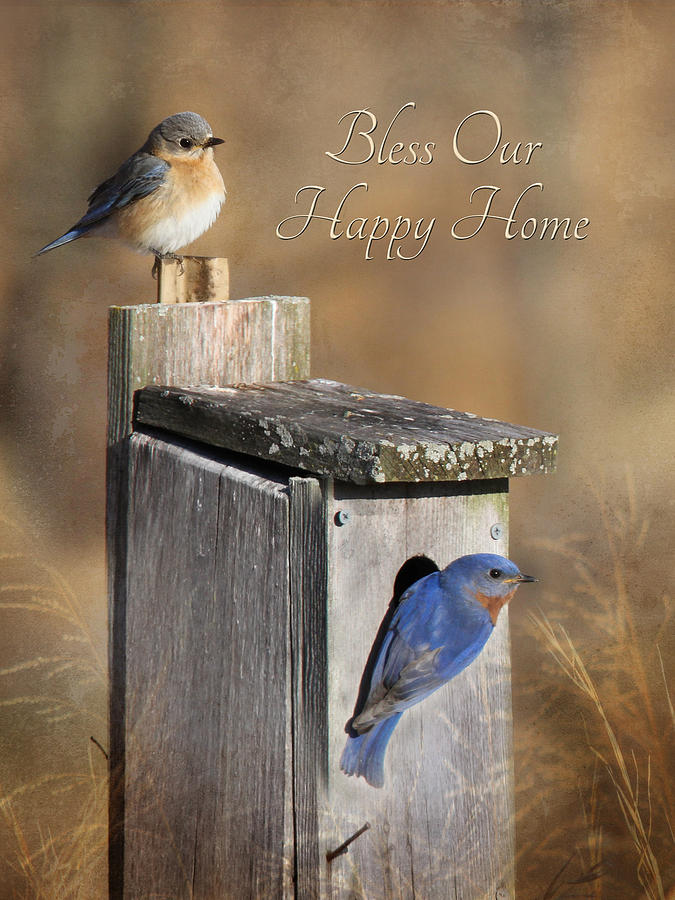 Blue Photograph - Bless Our Happy Home by Lori Deiter