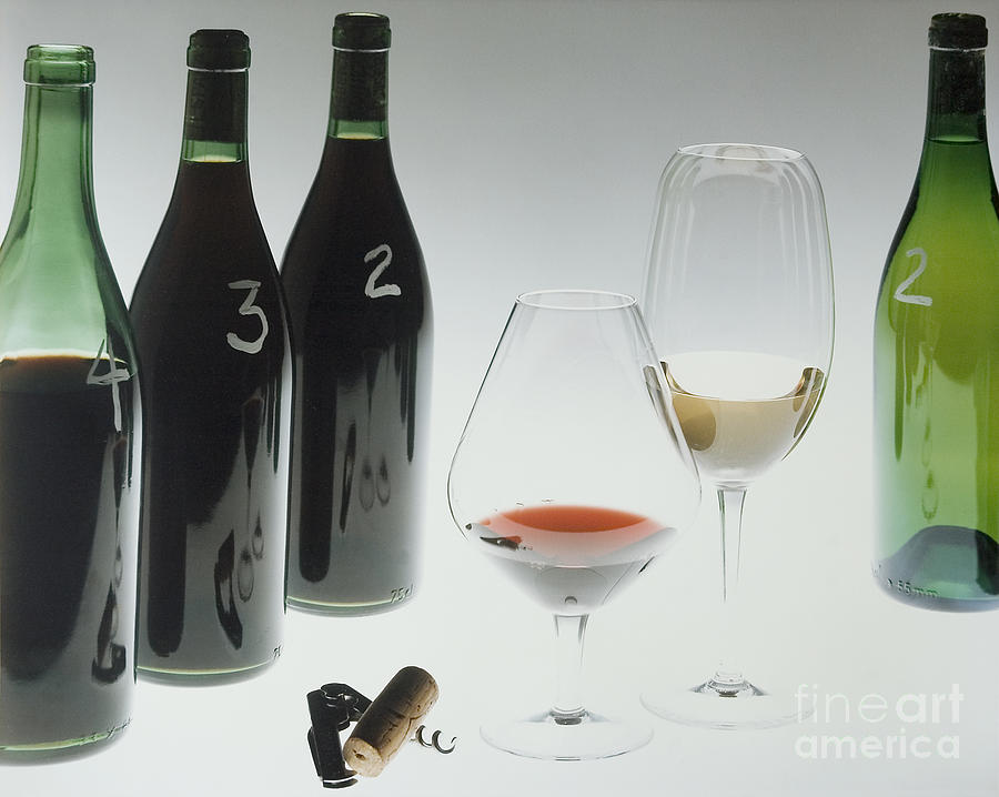 Wine Photograph - Blind Taste Test by Jerry McElroy