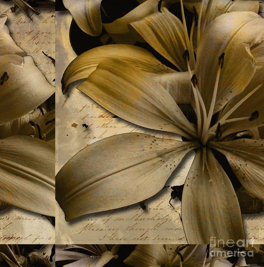 Bliss II Mixed Media by Yanni Theodorou