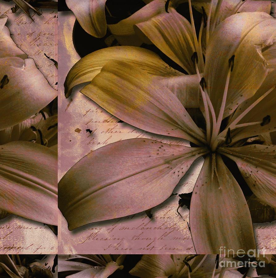 Bliss Mixed Media by Yanni Theodorou