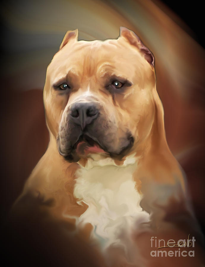Spano Painting - Blond Pit Bull By Spano by Michael Spano