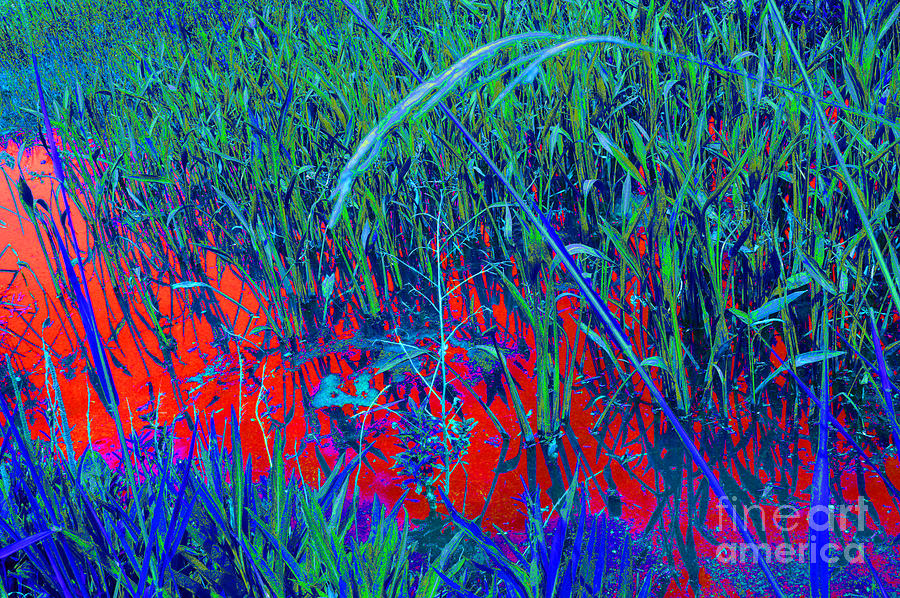 Battle Of New Orleans Digital Art - Bloody Battle Of New Orleans 1 by Alys Caviness-Gober