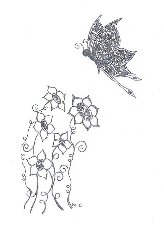 Pencil Drawing - Bloom  by Kali Kardsbykali