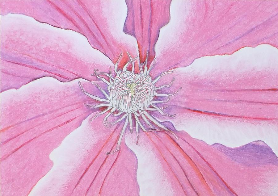 Blossom Pastel - Blossom by Sven Fischer