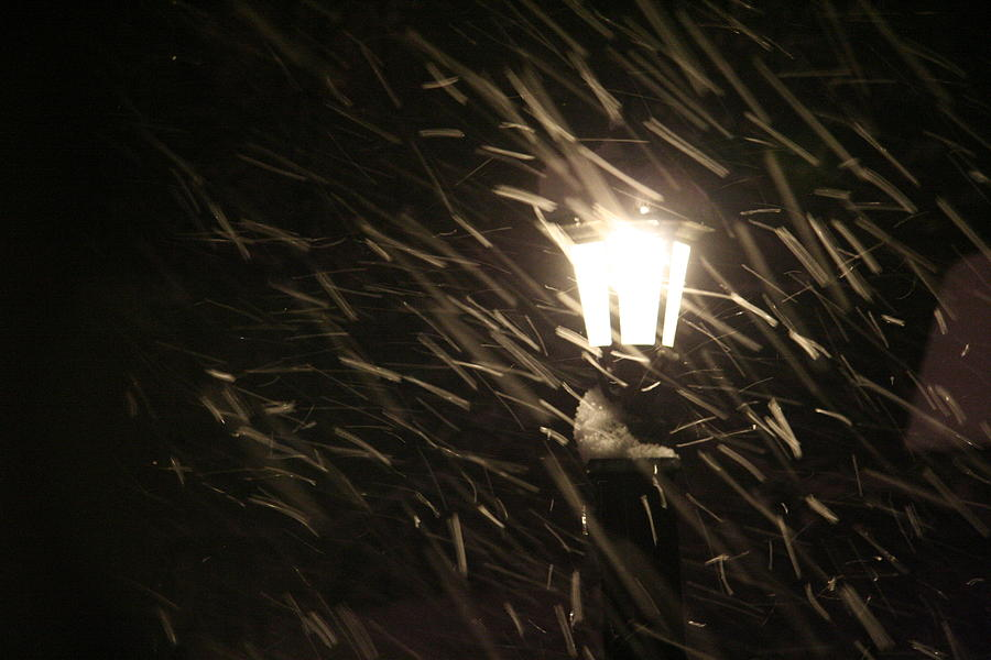 Blowing Snow Photograph - Blowing Snow Against Lamp by Carolyn Reinhart