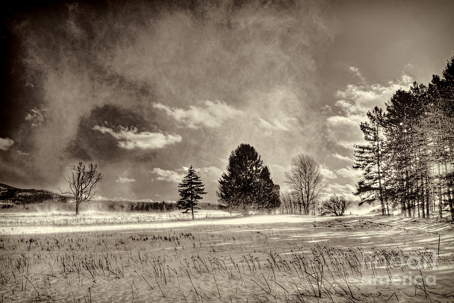 Winter Photograph - Blowing Snow Canaan Valley by Dan Friend
