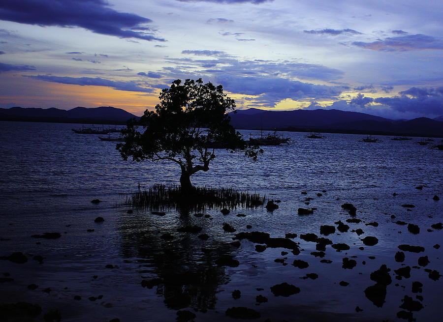 Sunrise Pyrography - Blue by Ange Sylvestri