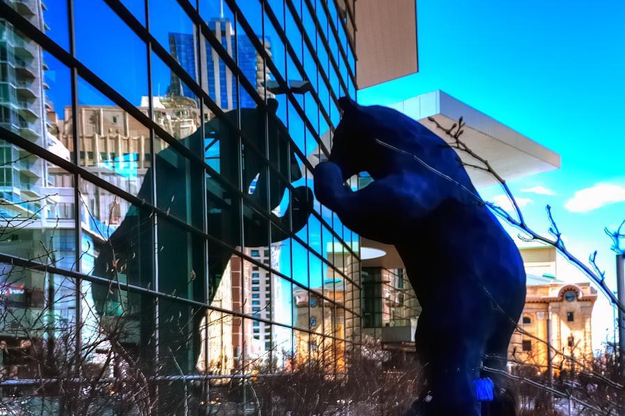 Reflect Photograph - Blue Bear 5214 by Jerry Sodorff