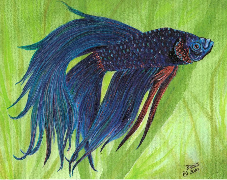 Blue betta painting by richard brooks for Betta fish painting