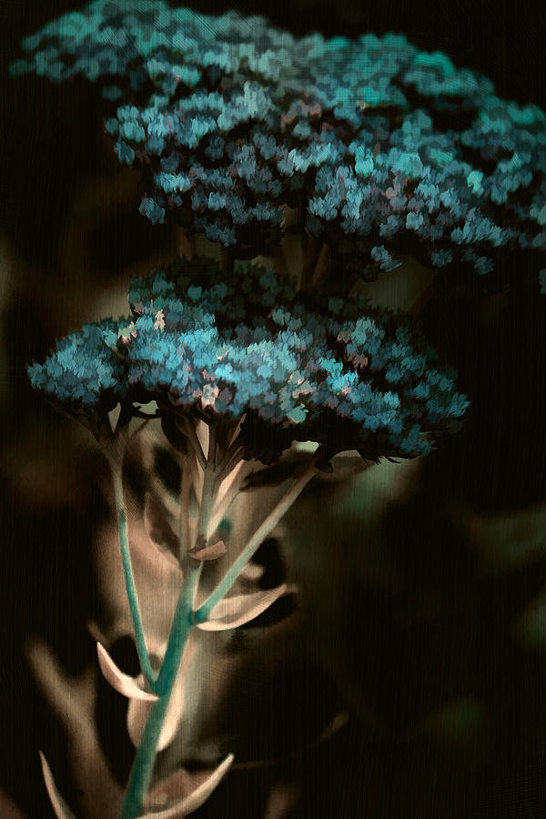 Digital Painting Photograph - Blue Bouquet by Bonnie Bruno