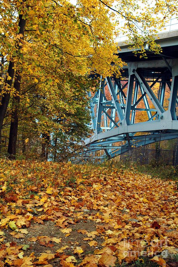 Cuyahoga Valley Photograph - Blue Bridge Beauty by Trish Hale