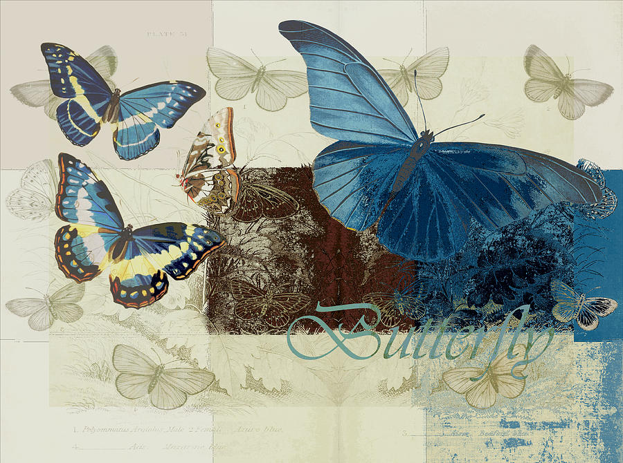 Butterfly Digital Art - Blue Butterfly - J152164152-01 by Variance Collections