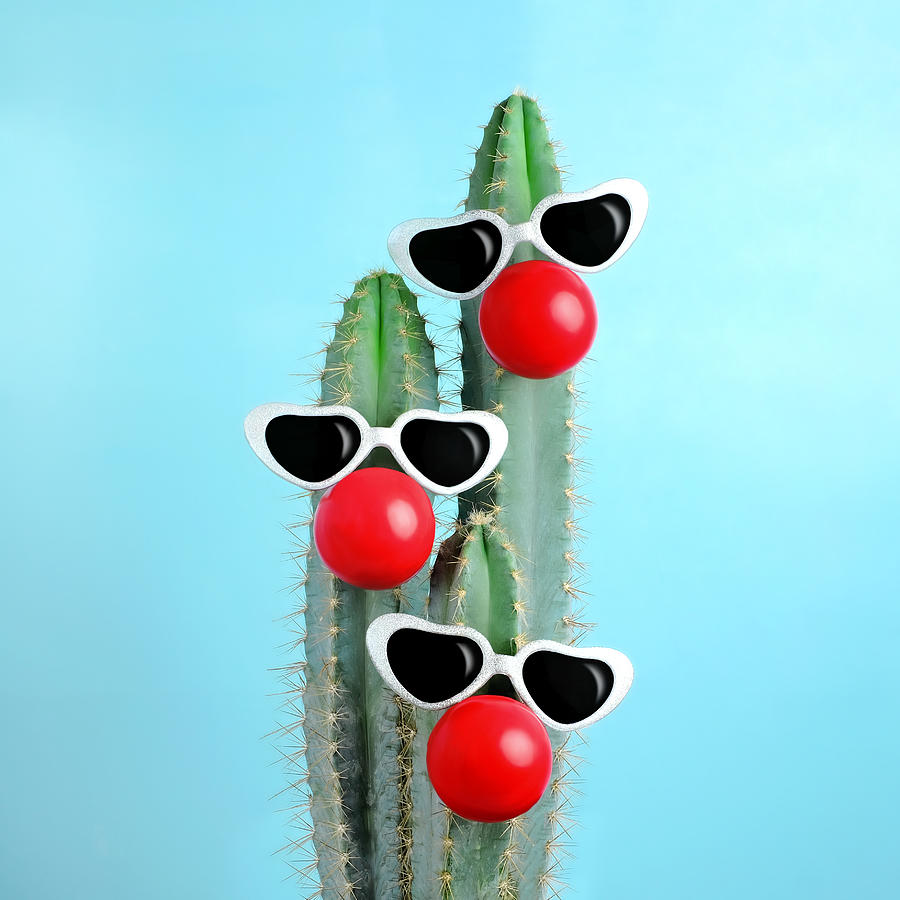 Event Photograph - Blue Cactus Decorated With Sunglasses by Juj Winn