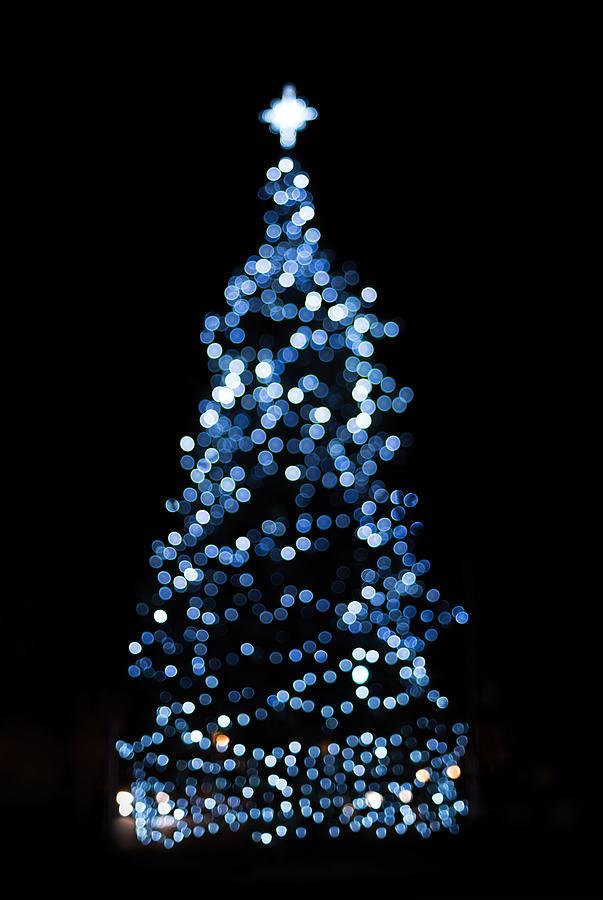 Blue Christmas Lights Photograph