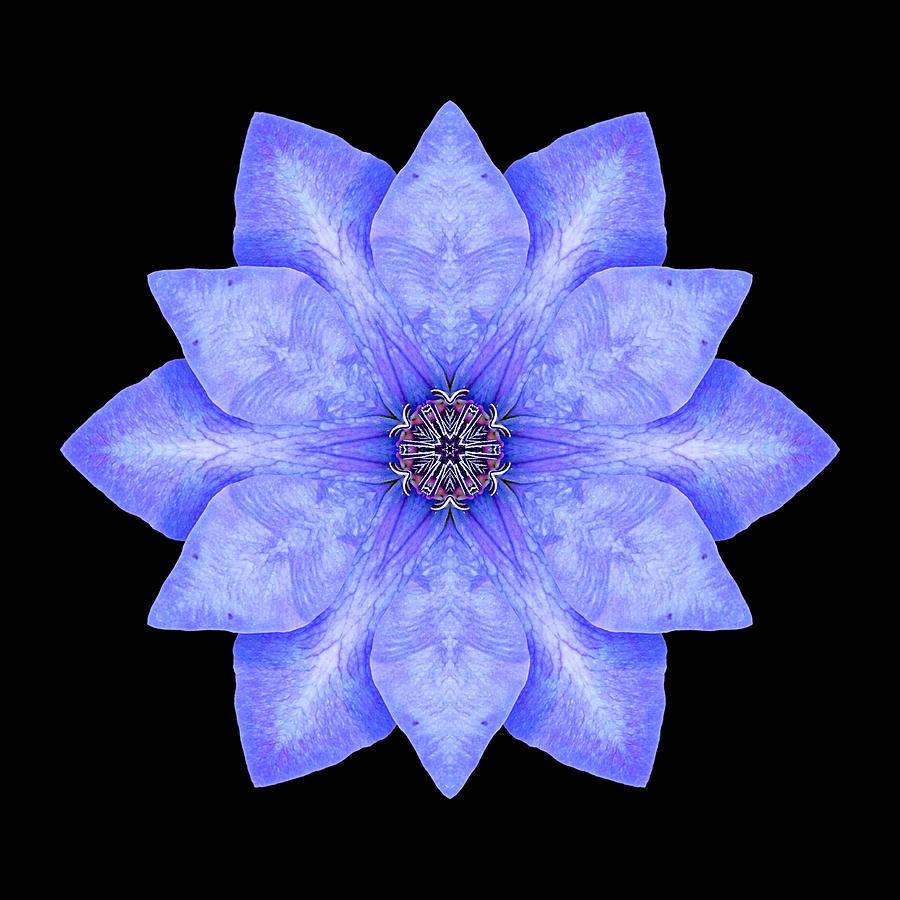 Flower Photograph - Blue Clematis Flower Mandala by David J Bookbinder