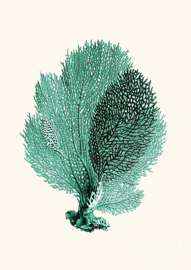 Blue Coral Drawing By Patruschka Hetterschij