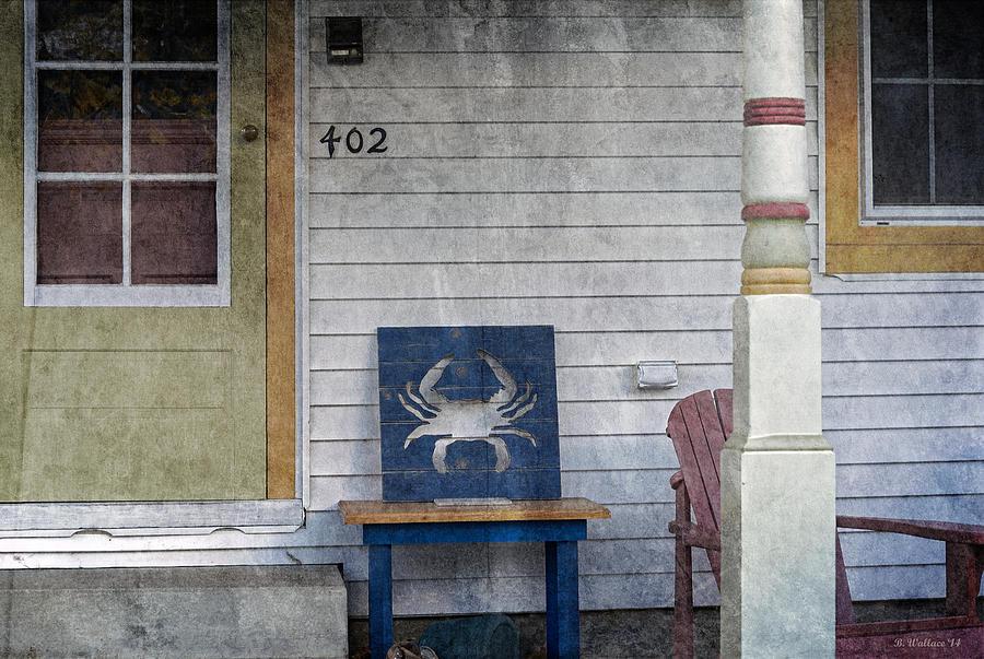 2d Photograph - Blue Crab Chair by Brian Wallace