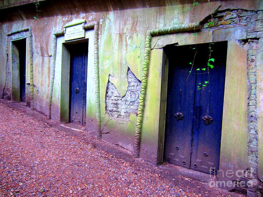 London Photograph - Blue Doors by C Lythgo
