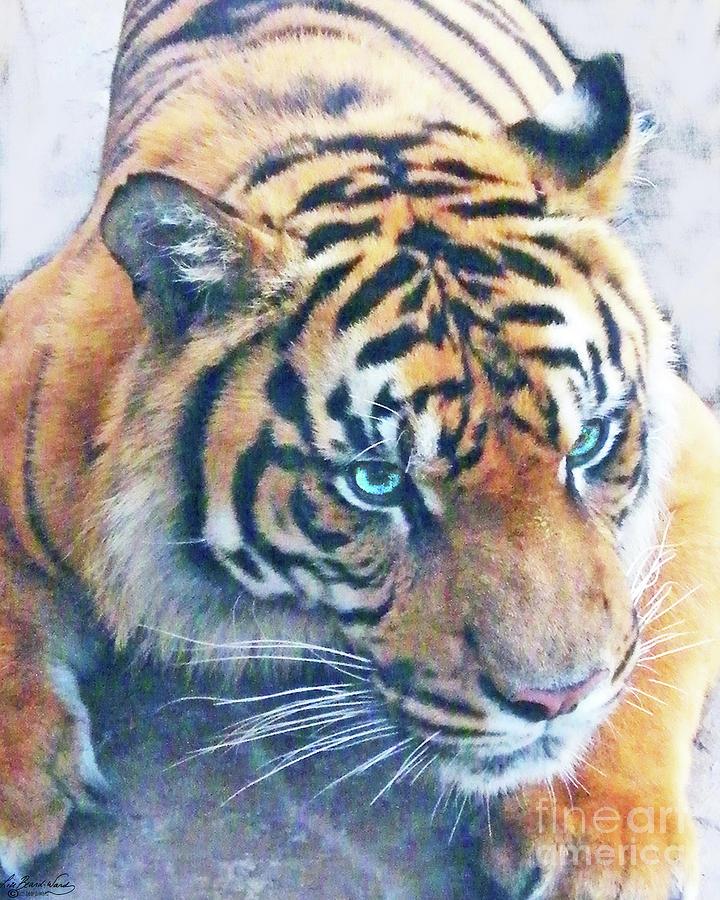 White Tiger Decor