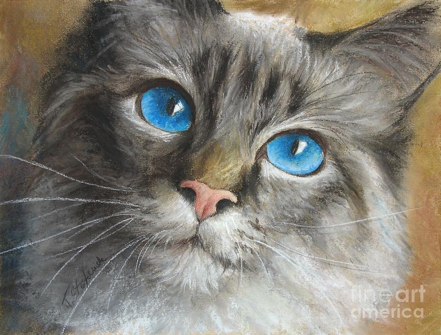 Cats Painting - Blue Eyes by Tobiasz Stefaniak