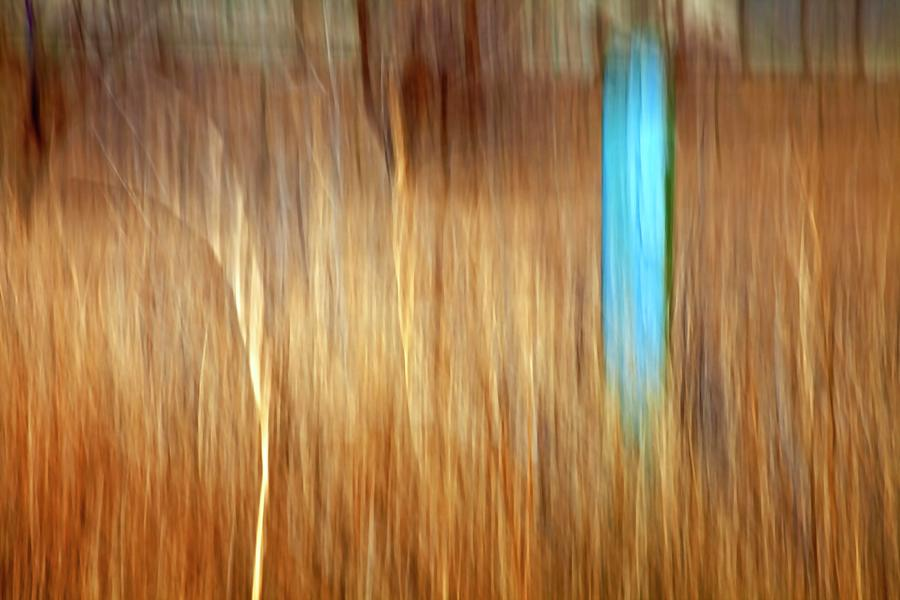 Outdoors Photograph - Blue Fencepost by Theresa Tahara