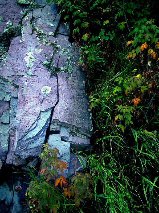Colorful Photograph - Blue Granite by Ric Soulen