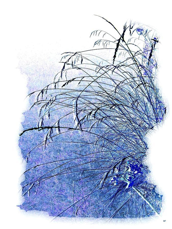 Blue Grass Digital Art