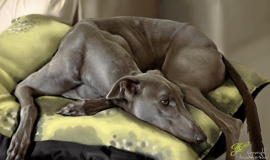 Greyhound Painting - Blue Grey by Ari Caer