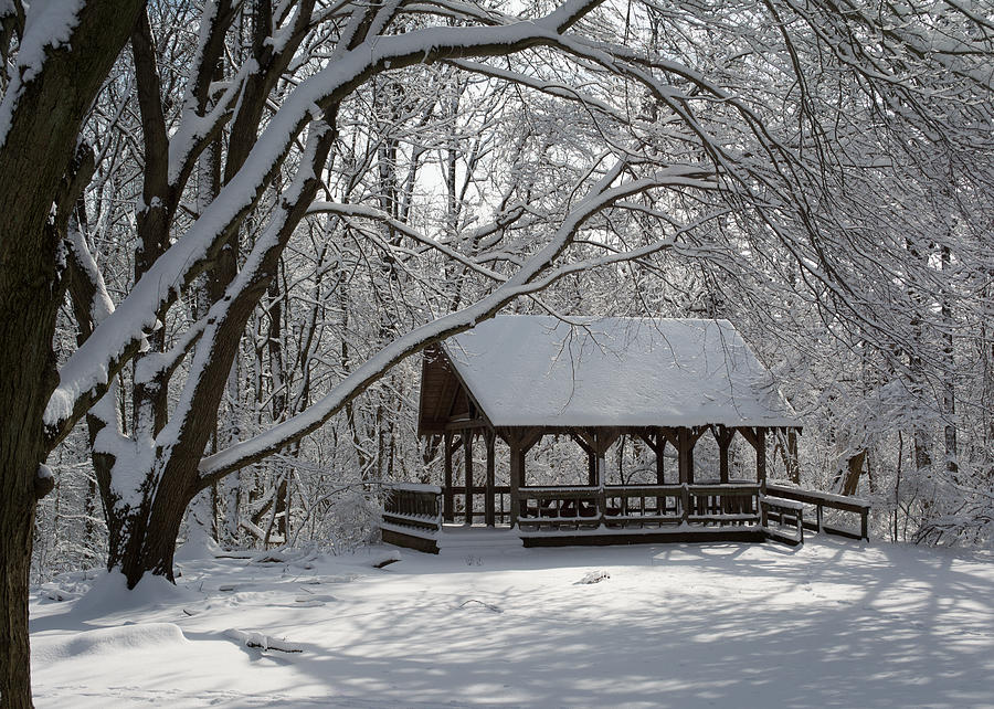 Blue Heron Park In Winter Photograph by Kenneth Cole