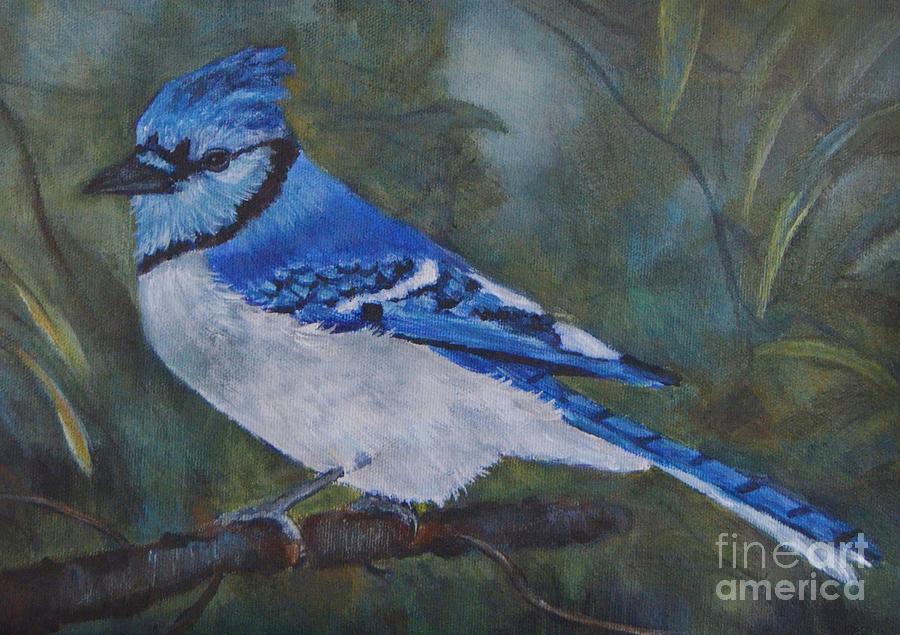 Blue Bird Painting - Blue Jay by Jana Baker