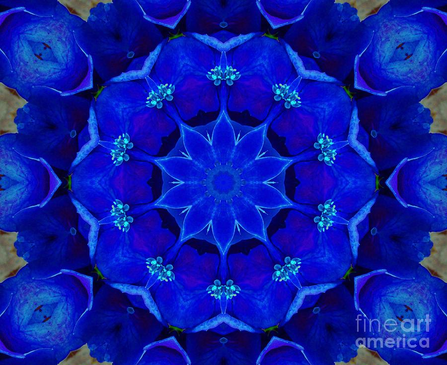 Blue Photograph - Blue Kaleidoscope  by Annette Allman