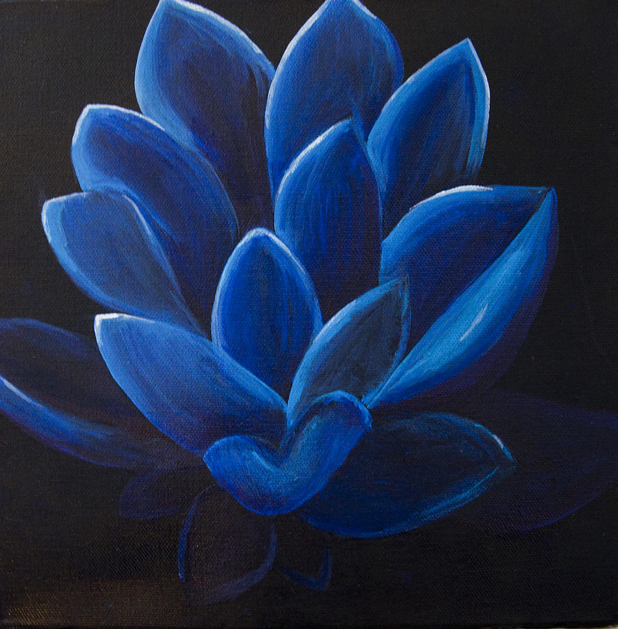 Blue Lotus Flower On Black Canvas Painting By Megan Sax