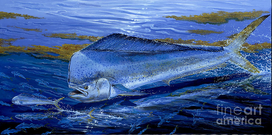 Mahi Mahi Painting - Blue Mahi Off0071 by Carey Chen