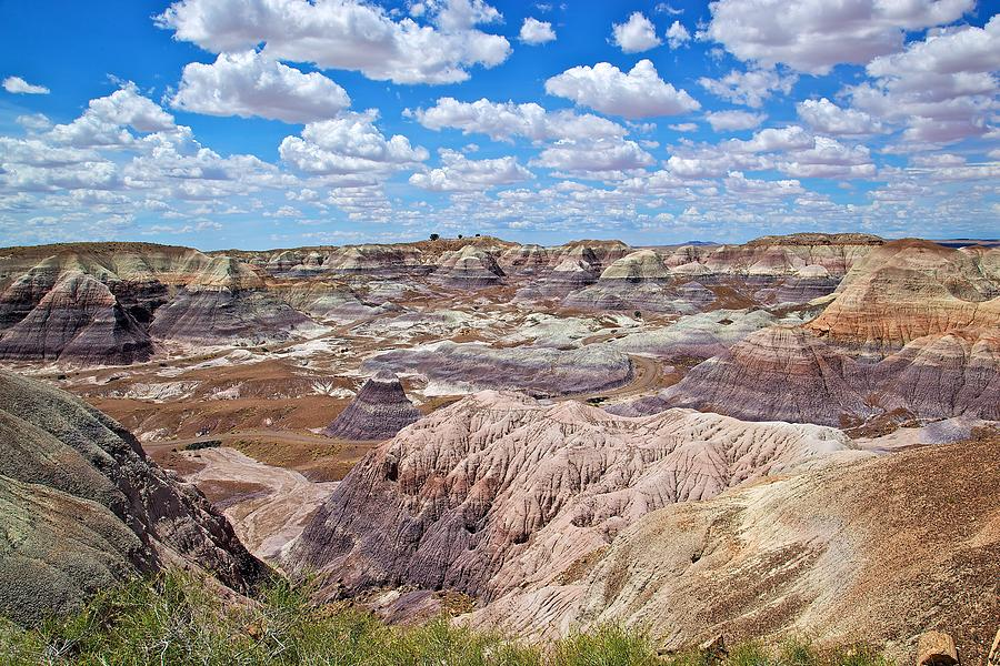 Blue Mesas of the Petrified Forest by Joseph Urbaszewski