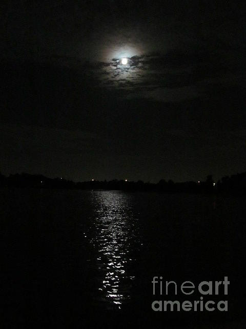 Blue Moon Over Orlando Photograph by Zoe Vega Questell