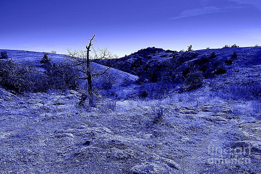 Landscape Photograph - Blue Night by Mickey Harkins