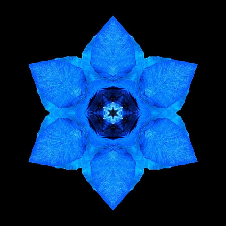 Flower Photograph - Blue Pansy II Flower Mandala by David J Bookbinder