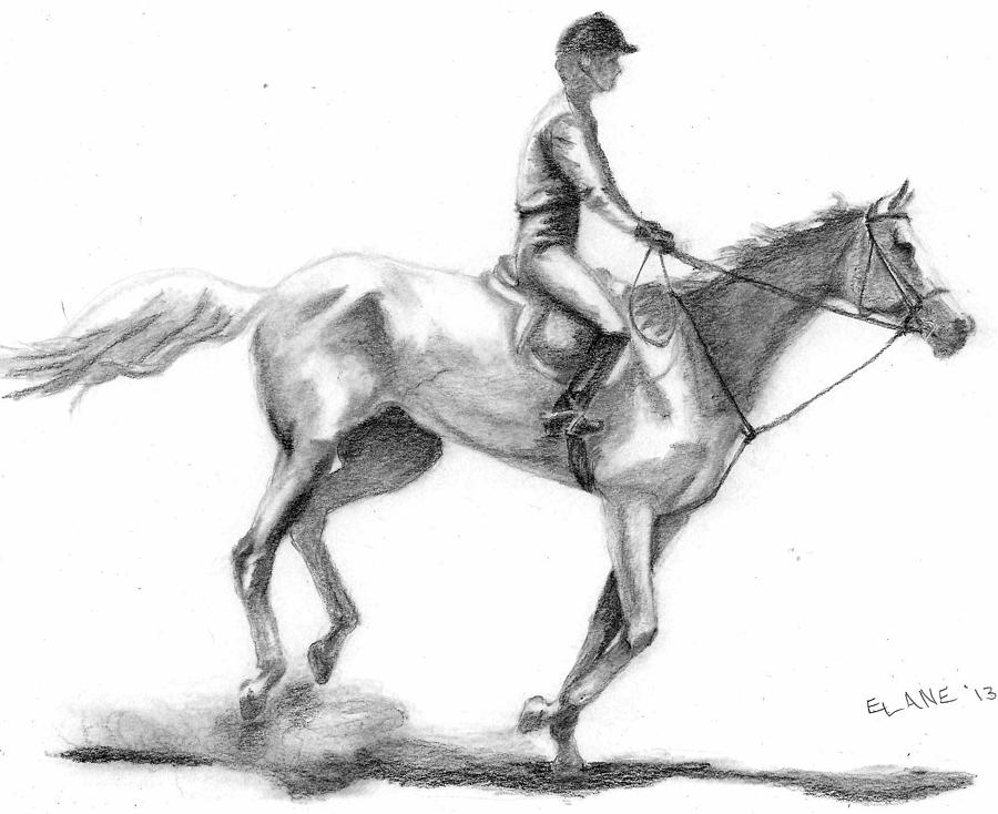 Horse And Rider Drawing - Blue Ribbon Team by Elizabeth Lane