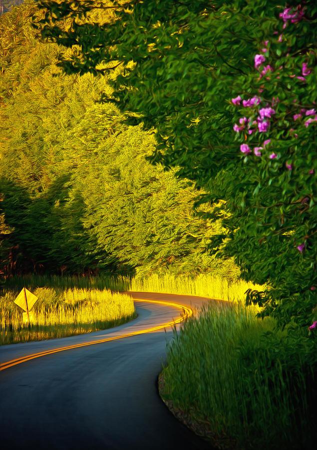 Blue Ridge Afternoon Photograph