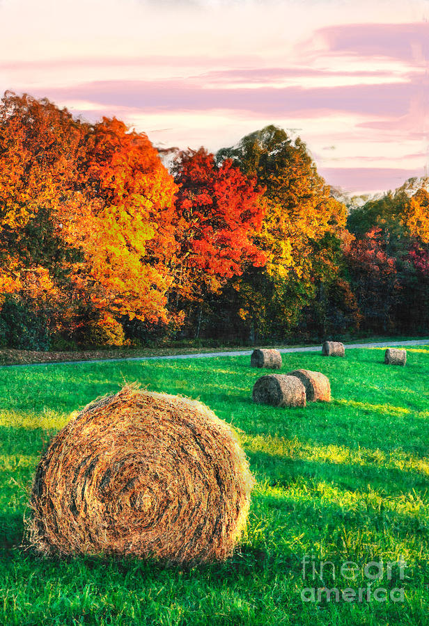 North Carolina Photograph - Blue Ridge - Fall Colors Autumn Colorful Trees And Hay Bales II by Dan Carmichael