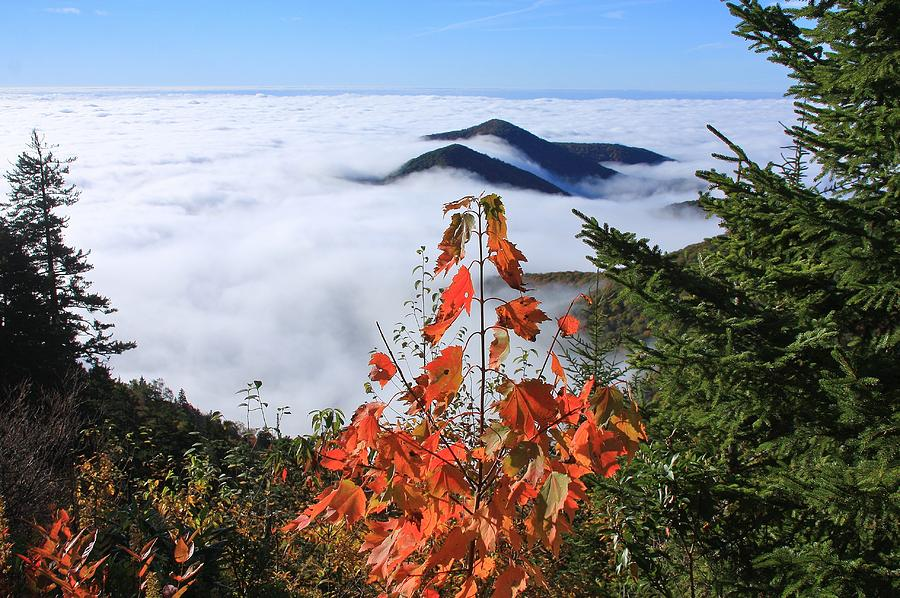 Blue Ridge Parkway Near The Devils Courthouse Photograph