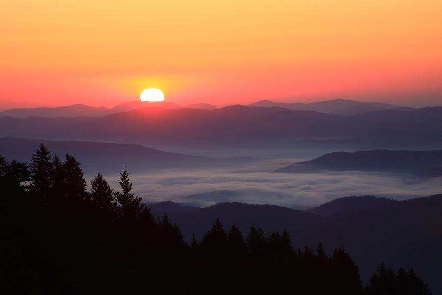 Michael Weeks Photograph - Blue Ridge Parkway Sea Of Clouds by Mountains to the Sea Photo
