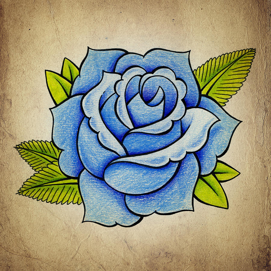 Blue rose drawing by samuel whitton tattoo drawing blue rose by samuel whitton izmirmasajfo